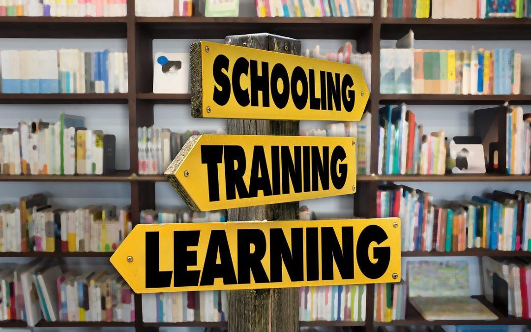 Czy szkolenia biznesowe skierowane do urzędników są konieczne?